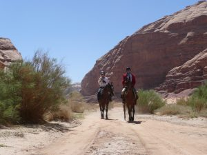 Enjoying a ride in Wadi Rum