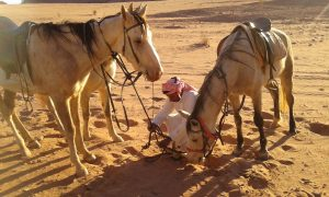 Horse riding in the desert with Bedouin